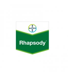 RHAPSODY®