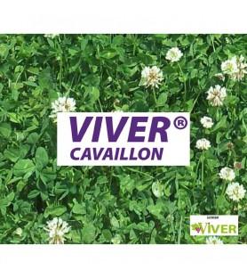 VIVER® CAVAILLON